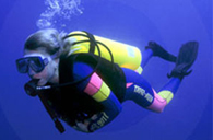Scuba Diving coursecheck out detail for our Padi Scuba diving course . Read more...